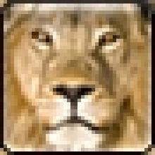 Animal Life Encyclopedia - Grzimek